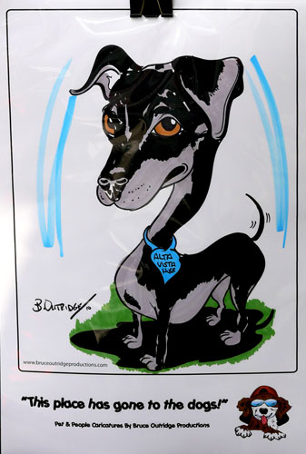 Live Pet caricature