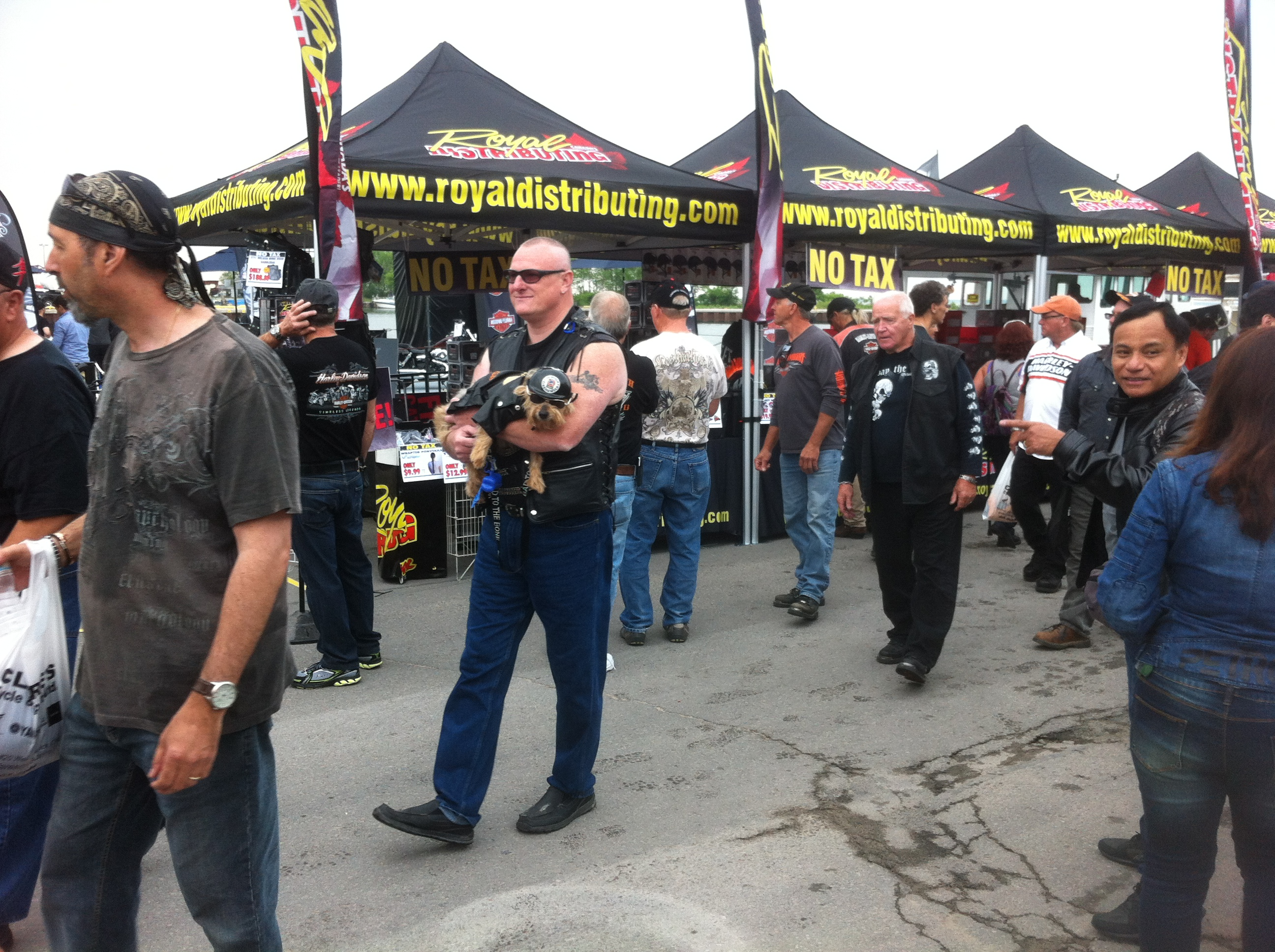 port dover single jewish girls Motorcyclists flock to port dover for friday  coalition avenir quebec boasts more women than men in  woman who duped tinder matches into dating competition has.