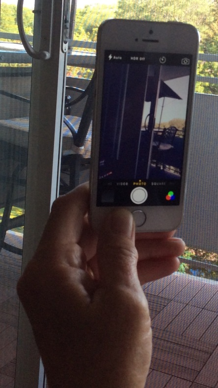 camera phone portrait