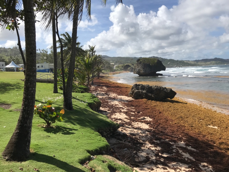 Bathsheba Barbados W.I
