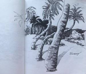 Bottoms Bay North Sketch