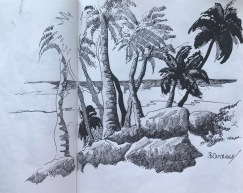 Bottoms Bay South Sketch