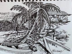 Martins Bay-Barbados Sketch