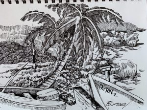 Martins Bay-Barbados Sketch