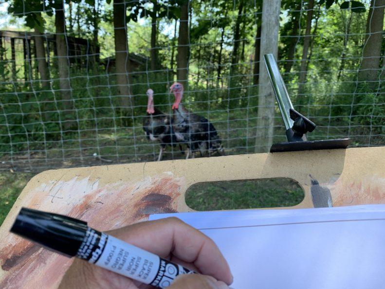 Bruce drawing turkeys