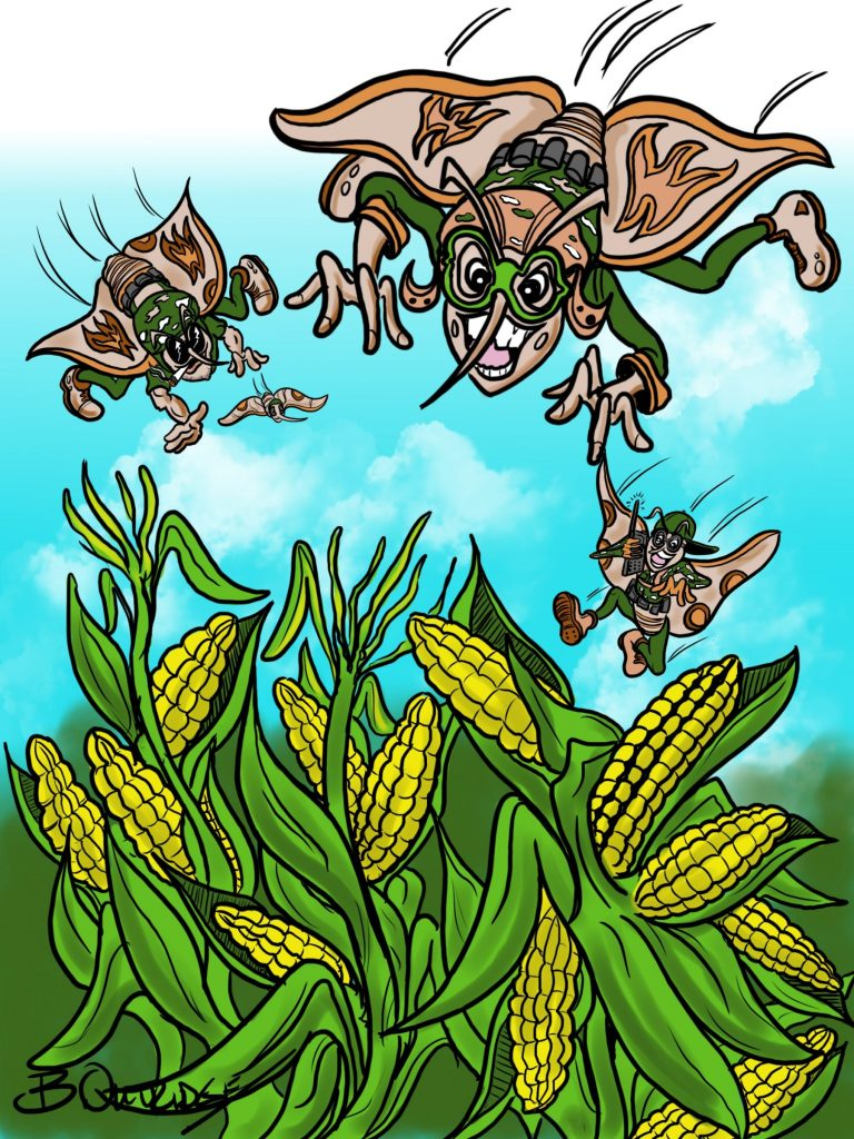 Attack of the Corn-Copyright Bruce Outridge Productions