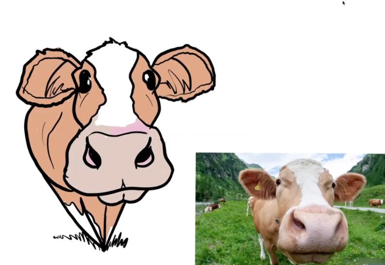 Caricaturing animals